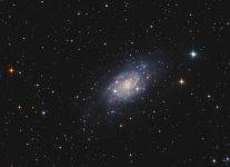 NGC2403 crop.jpg
